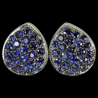 Striking 18K White Gold Blue Sapphire Earrings Snap Closure
