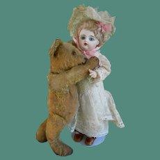 **Cute 1920 Steiff Teddy bear** beloved fellow...