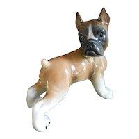 Sweet, Cute puppy porcelain****** BOXER*****