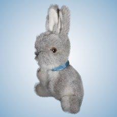 **Steiff little Rabbit**** Cute !