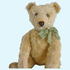 Steiff Bear all original - 1920