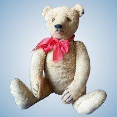 Great Steiff Teddy Bear with ID 1930 - 1935