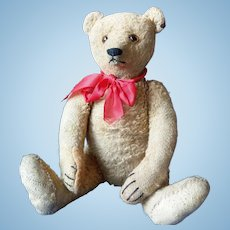 Great Vintage Steiff Teddy Bear 1930 - 1935