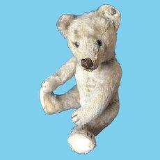 Steiff Bear just 8 inch small -  1950 - so lovely