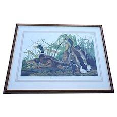"John James Audubon ""Mallard Duck"" by R.Havell"