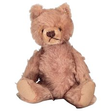 Very cute Tagged Steiff Teddy bear