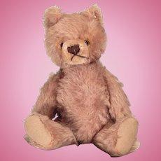 Very cute Tagged Steiffed Teddy bear