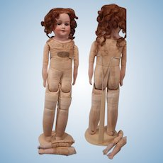 Sweet Baby Betty Shoulder head Doll By Armand Marseille