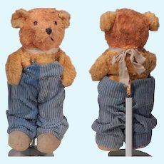 Sweet Little Mohair Hard Stuffed Bear