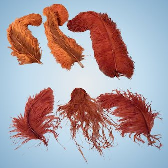Great lot of Antique Ostrich Feather in shades of Orange.