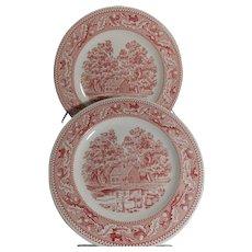 Vintage Pair of Royal Ironstone Memory Lane Dinner Plates