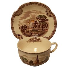 Johnson Brothers Old Britain Castle Cup and Saucer