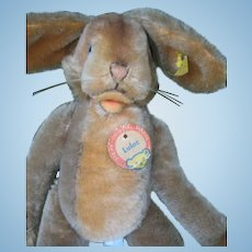 Steiff Rabbit Lulac  with tag and button  16 inches or 40 cm