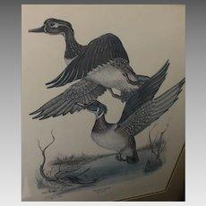 "Tony Biagi ""Wood Duck"" Lithograph (ART10075)"