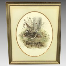 """30% Off Intro Special EXTENDED! Don Whitlatch Circa October 1972 """"Bobwhite Quail"""" Numbered Lithograph (ART10116)"""
