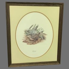 """Don Whitlatch """"Woodcock"""" Numbered Lithograph (ART10117)"""