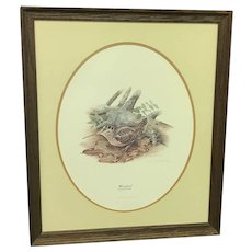 "Don Whitlatch ""Woodcock"" Numbered Lithograph (ART10117)"