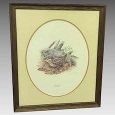 """30% Off Intro Special EXTENDED! Don Whitlatch """"Woodcock"""" Numbered Lithograph (ART10117)"""