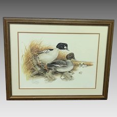 """30% Off Intro Special EXTENDED! Don Whitlatch Circa 1974 """"Common Goldeneye"""" Numbered Lithograph (ART10119)"""