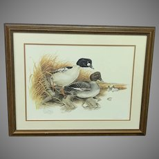 "Don Whitlatch Circa 1974 ""Common Goldeneye"" Numbered Lithograph (ART10119)"