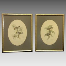 """30% Off Intro Special EXTENDED! Pair of 1978 Don Whitlatch numbered lithographs entitled: """"Golden-crowned kinglet"""" and """"Ruby-crowned kinglet"""" (ART10120)"""