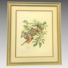 """30% Off Intro Special EXTENDED! Circa 1974 Don Whitlatch """"Robins"""" Lithograph (ART10121)"""