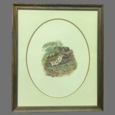 """Circa 1973 Don Whitlatch """"Wood Thrush"""" Signed and Numbered Lithograph (ART10125)"""