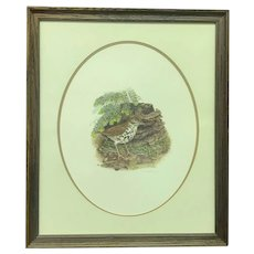 """30% Off Intro Special EXTENDED! Circa 1973 Don Whitlatch """"Wood Thrush"""" Signed and Numbered Lithograph (ART10125)"""
