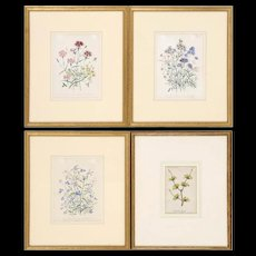 Set of Four Beautiful Antique Botanical Floral Illustration Lithographs Hand-Colored Framed in Gilt Wood