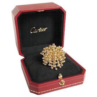 Cartier Paris Nouvelle Vague Perruque Ring