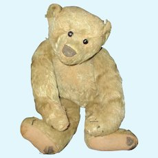 """14"""" Antique """"Much Loved"""" Early Ideal Teddy Bear  AS IS"""