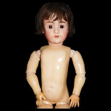 """30"""" Antique Handwerck Doll Marked Head And Body - Ready To Dress"""