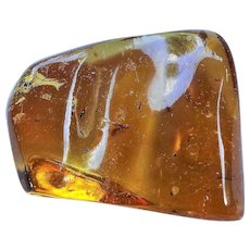 Genuine Amber with Winged Termite, Gnats and Insects Fossil Inclusions 36.1 Grams