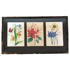 Early Hand-Painted Etched Botanicals, Three in Frame