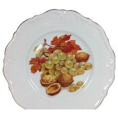 2 Winterling Roslau Porcelain Plates Bavaria