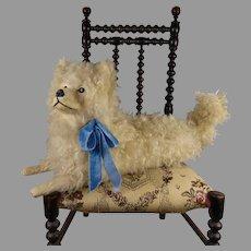 Adorable French original antique white fur pajama dog
