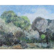 Francesco Colacicchi (Listed Italian, born 1942)  Landscape with Trees, oil