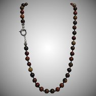 Wild Horse Jasper Necklace With Earrings