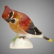 Meissen Porcelain Bohemian Waxwing Bird