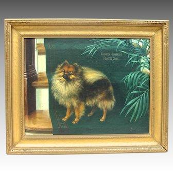 Vintage Oil on Canvas Pomeranian Portrait, 'Champion Starbright Princess Sonia', by Gilman Low 1924