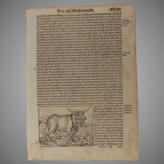 16th Century Woodcut of Animals (Bees / Bear / Bull) - Book page of Cosmographia (Sebastian Münster)