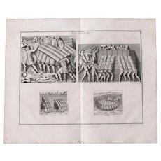 18th Century Copper Engraving of Ancient Roman Testudo Formation from L'antiquité expliquée et représentée en figures by Bernard de Montfaucon