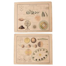 1900 Chart about the Sun and Planets - Polychrome Lithograph