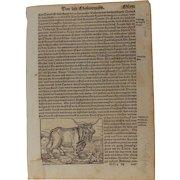 16th Century Woodcut of Animals (Bees / Bear / Bull) - Book page of Cosmographia (Sebastian Münster)