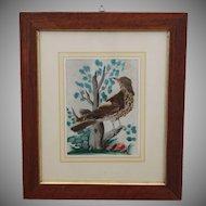 "19th Century Original Egerer ""Federbild"" Feather Picture - Biedermeier Art from Bohemia"