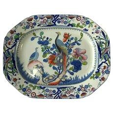 Large Mason's Ironstone Pottery Oriental Pheasant Pattern Plate/Platter. C.1820