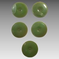 Group of Five Olive Green Bakelite Buttons