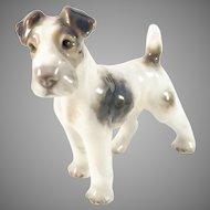 Dahl Jensen Denmark Mid Century Foxterrier Porcelaine Figurine. Design 1118
