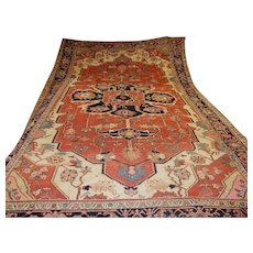 Antique Persian Heriz Rug Size: 9.9 x 14.9