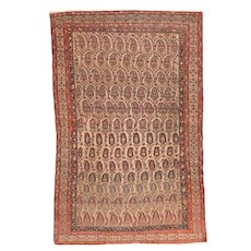 Antique Rust Malayer Persian Area Rug Wool Circa 1910, SIZE: 5'9'' x 8'10''